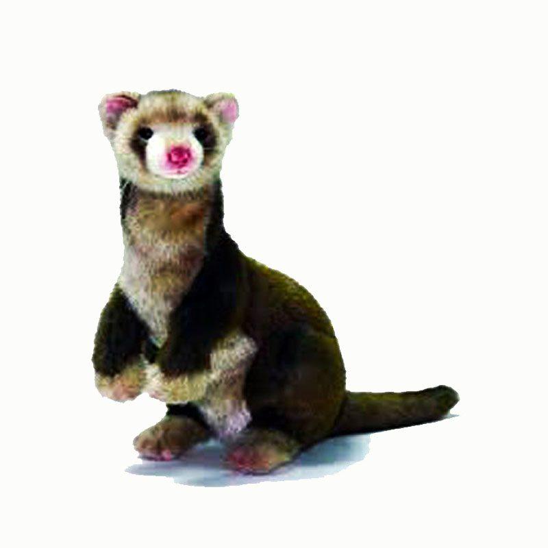 toy ferret