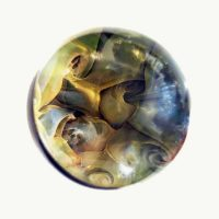 Golden Spiral Art Marble by Polly Toombs