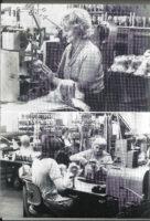 Sasha factory-